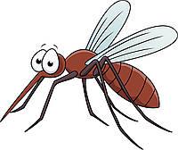 Борьба с комарами на открытых территориях Кременчуга, фото 1