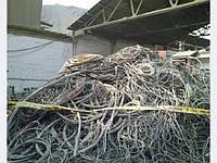 Куплю отходы кабеля и кабельно-проводниковой продукции