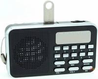 Радиоприемник USB 1680