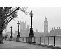 Фотообои W&G 00142 Лондон туман 366*254