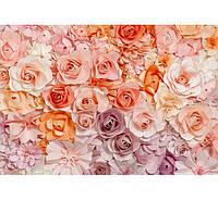 Фотообои W&G 00147 Цветы 366*254