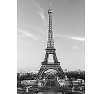 Фотообои W&G 00386 Эйфелевая башня  183*254