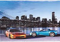 Фотообои Prestige № 5 Автомобили 196*136