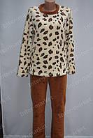 Теплая женская велюровая пижама леопардовая/коричневая