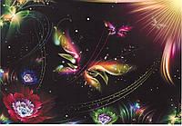 Фотообои *Престиж* № 1 Неоновая бабочка(136х196)