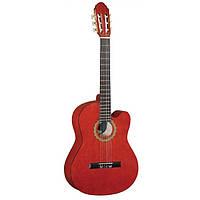 Классическая гитара MAXTONE CGC3910С