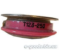 Тиристор Т123-250