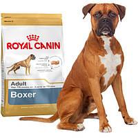 Сухой корм Royal Canin Boxer (Роял Канин) для взрослых собак 12 кг