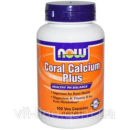 Кораловий кальцій Плюс, Now Foods,100 капсул у рослинній оболонці, фото 2