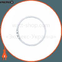 Osram Люминесцентная лампа кольцевая FC 55W/840 2GX13 OSRAM
