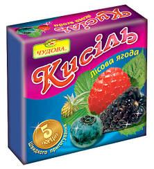 """Кисель лесная ягода """"Чудова"""" брикет 160 гр"""