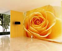 "Фотообои ""3D желтая роза"""