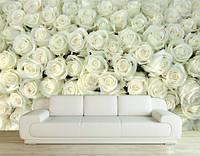 "Фотообои ""Миллион белых роз"""