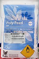 Удобрение хелатное с микроэлементами Полифид 12.05.40.+Ме Polyfeed (ZIP- пакет)  1 кг Haifa