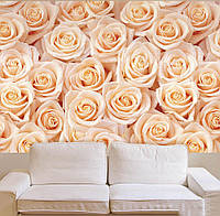 "Фотообои ""Миллион роз"", текстура песок, штукатурка"