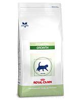 ROYAL CANIN Cat pediatric growth 2 kg