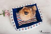 Лежак-диван для собак и кошек Haustier Del Mare 50х40см