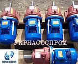 Мотор-редуктор 3МП-31,5-3,55-0,18, фото 5