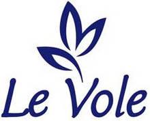Гель-краска Le Vole