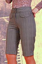 Штани жіночі короткі ( БР 003)