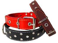 Ошейники кожаный для собак