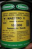 Семена моркови Маэстро F1 / Мaestro F1, 100 000 семян, фото 2