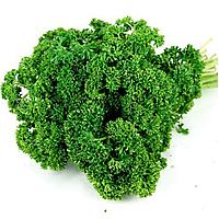 Семена петрушки кудрявой Изумруд 500 гр. Agri Saaten