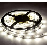 Светодиодная лента SMD5050 14,4W 60 LED/m IP20 White