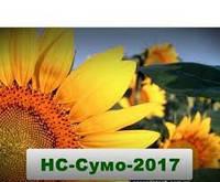 Семена подсолнечника НСХ Сумо 2017 (гранстар)