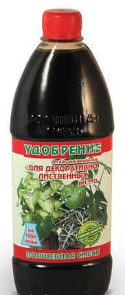 """Органоминеральное удобрение ТМ """"Чистый лист"""" Волшебная смесь (500 мл), для декоративно-лиственных, фото 2"""