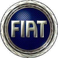 Ремонт рулевой рейки Fiat (Фиат), фото 1