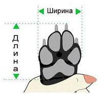 Подбор размера обуви для собак