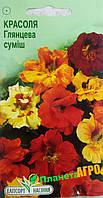 """Семена цветов Настурция (Красоля) Глянцевая смесь, многолетнее 10 шт, """" Елітсортнасіння"""",  Украина"""