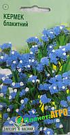 """Семена цветов Кермек голубой, однолетнее 0.1 г, """"Елітсортнасіння"""", Украина"""