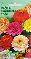 "Семена цветов Цинния (Майоры) скабиозовидная, смесь, однолетнее 0.5 г, ""Елітсортнасіння"", Украина"