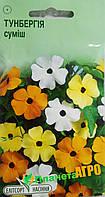 "Семена цветов Тунбергия крылатая, смесь, многолетнее  10 шт,  ""Елітсортнасіння"", Украина"