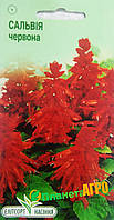 """Семена цветов Шалфей блестящий красный, многолетнее 0,1 г """" Елітсортнасіння"""",  Украина"""