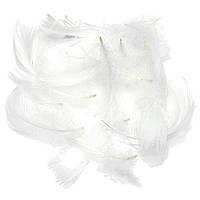 Перья Декоративные Белые 7-12 см 150 шт/уп