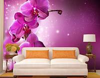 """Фотообои """"Пурпурная орхидея"""""""