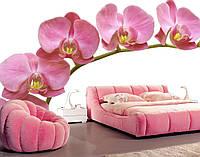 """Фотообои """"3d орхидея"""""""