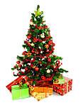 Новогодняя елка, искусственная или живая?