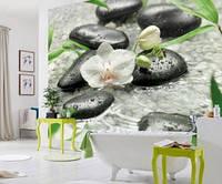 "Фотообои ""Орхидеи и камни в интерьере"", текстура песок, штукатурка"
