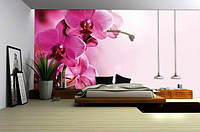 "Фотообои ""Ветка пурпурной орхидеи"""