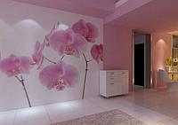 """Фотообои """"Малиновые орхидеи на обоях"""", текстура песок, штукатурка"""