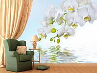 """Фотообои """" С веткой орхидеи над водой"""", текстура песок, штукатурка"""