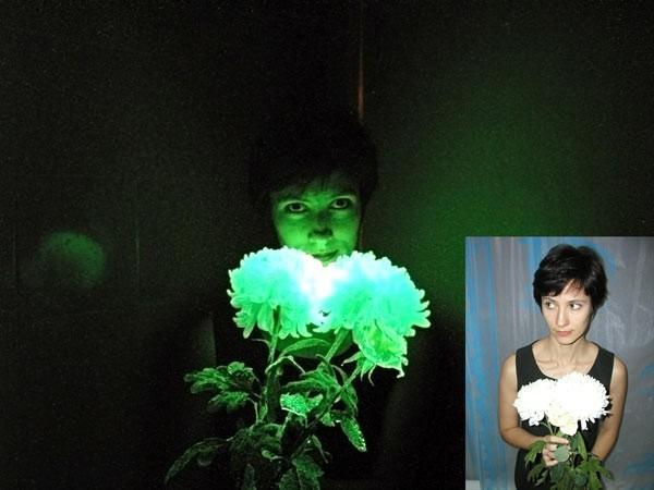 Краска ТАТ 33 для цветов светящаяся в темноте оптом и в розницу свечение 8 - 12 часов - Noxton technologies в Киеве