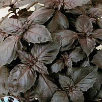 РЕД РУБИН / RED RUBIN  – базилик, Hortus 100 грамм