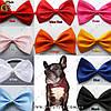 """Бантик-бабочка для животных - """"Pet Tie"""""""