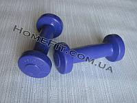 """Гантели для фитнеса """"Титан"""" 2 шт по 0.5 кг, фото 1"""