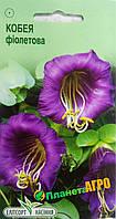 "Семена цветов Кобея фиолетовая, однолетнее 5 шт, ""Елітсортнасіння"", Украина"